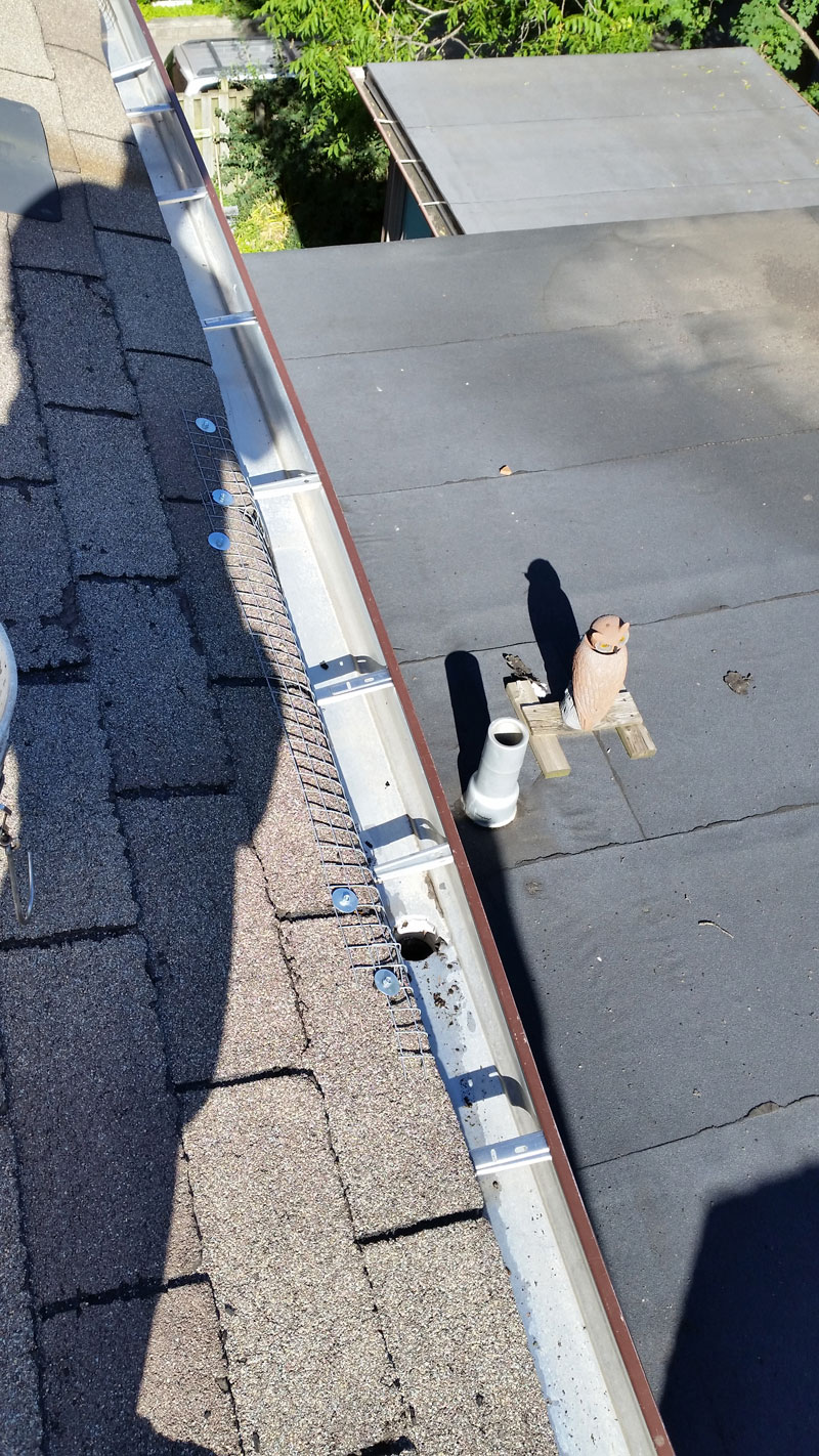 Gutter Cleaning Mississauga Solid Eavestrough